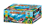 Product Image for Marine Life